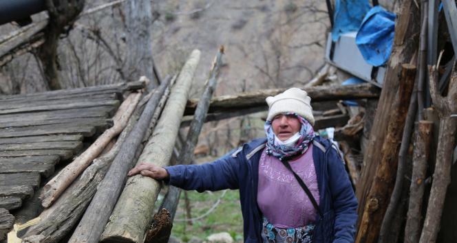Artvin Ortaköy'de evi yanan yaşlı kadın 'Ben nerede kalacağım' demişti, Vali Yardımcısı aileyi ziyaret etti