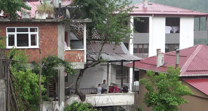 Babasının diktiği armut ağacını kesmeye kıyamadı, balkonun içerisinden geçirdi