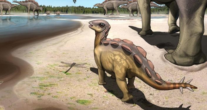 Çin'de 'bebek dinozora ait' 5.7 santimetrelik bir ayak izi bulundu