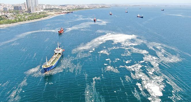 Deniz salyası ve balık ölümlerinin nedeni su sıcaklığının artması