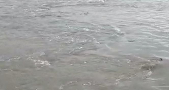 Hatay'da deniz suyu önce çekildi sonra yeniden yükseldi