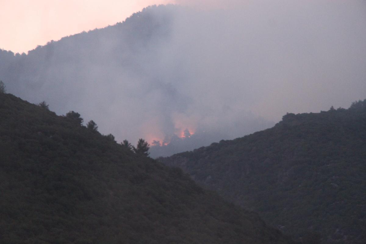 Hatay'da orman yangınına yerden müdahale devam ediyor