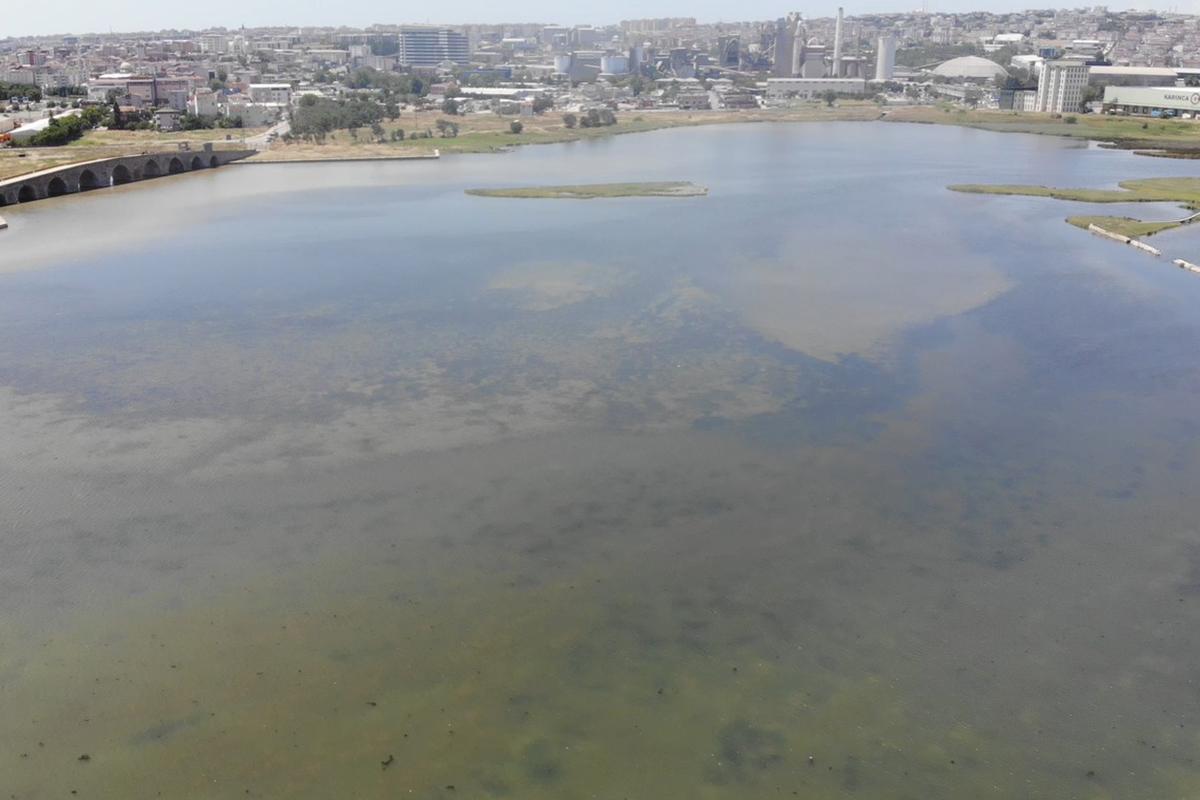Kirlilik nedeniyle Büyükçekmece Gölü'nün rengi değişti