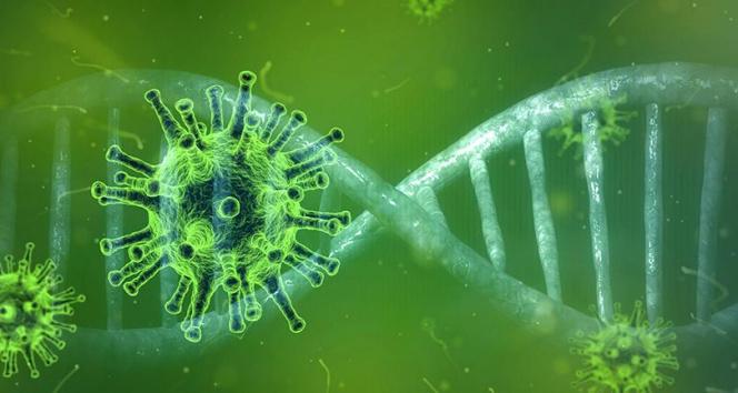 KKTC'de saptanan SARS-CoV-2'nin genom haritası çıkarıldı