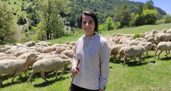 Koyunlarını otlatarak Avrupa Şampiyonası'na hazırlanıyor