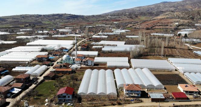 'Küçük Antalya' olarak anılıyor, köyün tamamına yakını sera ile kaplı
