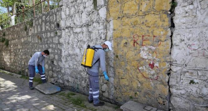 Küçükçekmece Belediyesi yaz aylarında sivrisineklere karşı etkin mücadele başlattı