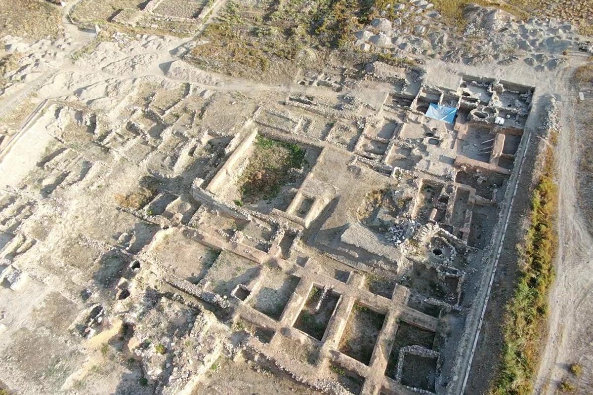 Kültepe'de ilk kez 4 bin sene önce yaşayan aslana ait kemik bulundu