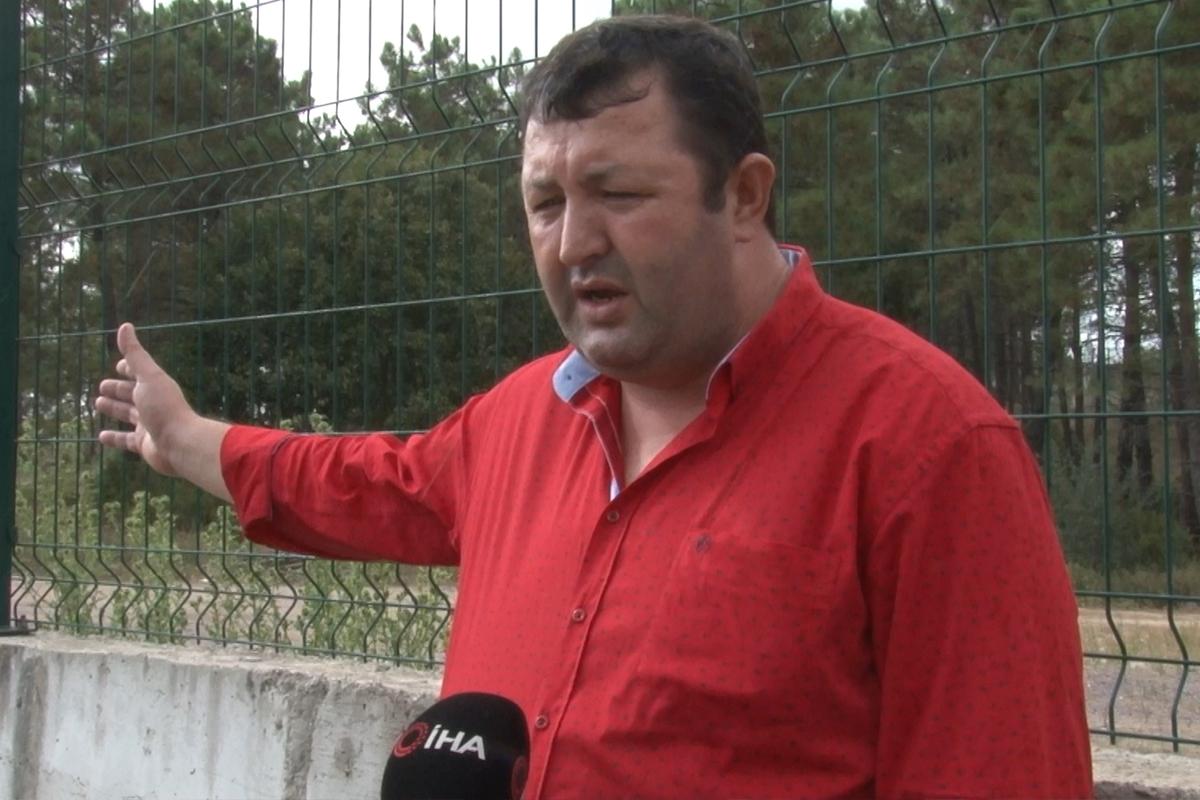 Mahalle muhtarından İBB'ye tepki: 'Onlarca hayvanın açıkta kalmış cesetleri buradaydı'