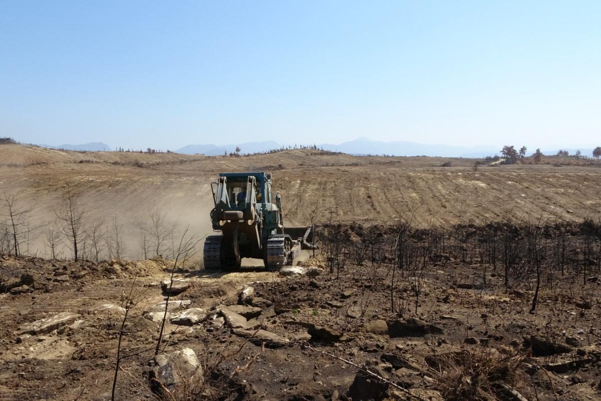 Manavgat'ta yanan ormanlık alanlar iş makineleri tarafından dikime hazırlanıyor
