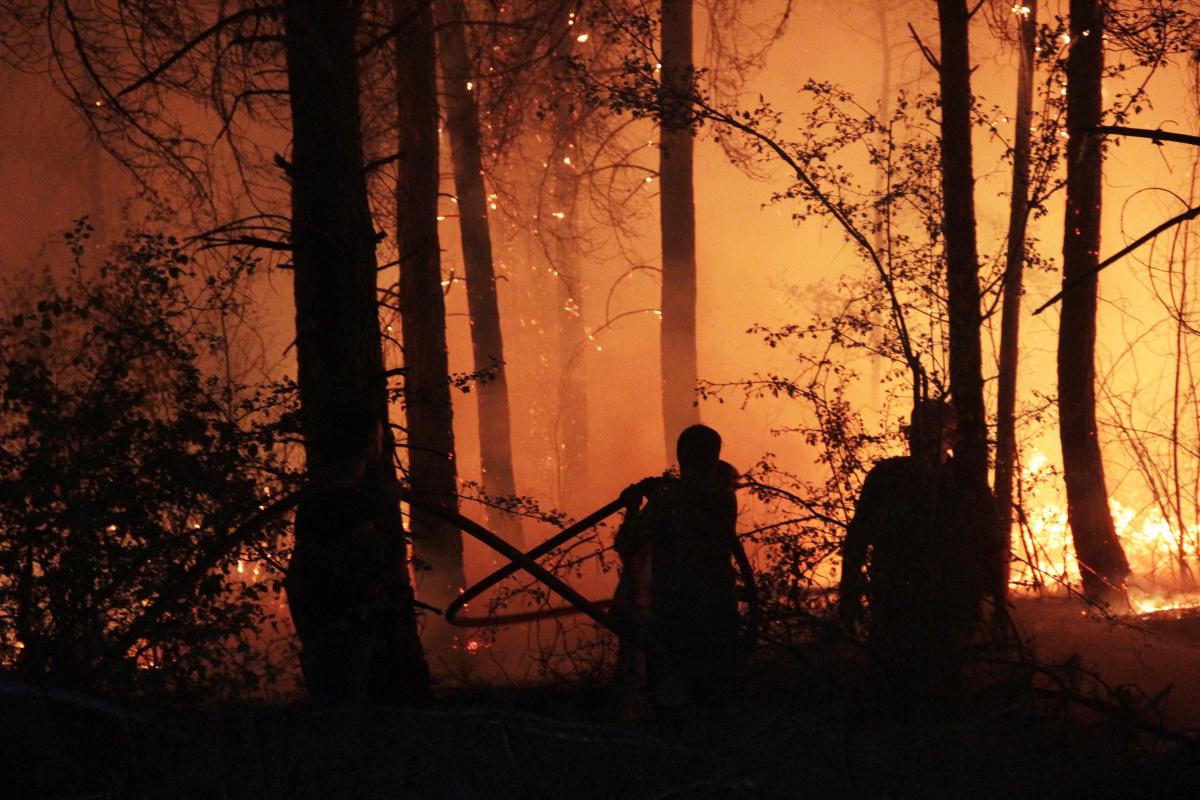 Muğla'da ormanlara giriş 1 Ekim'e kadar uzatıldı