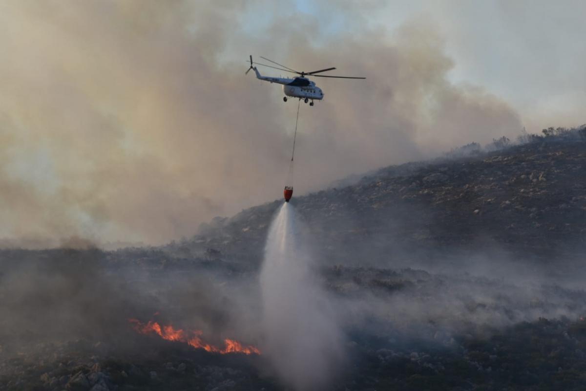 """Orman Genel Müdürlüğü: """"Bugün çıkan 8 orman yangınının 7'sini kontrol altına aldık"""""""