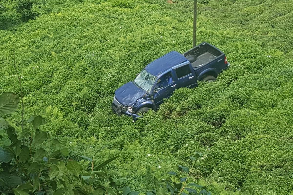 Rize'de araç çay tarlasına uçtu: 2 yaralı