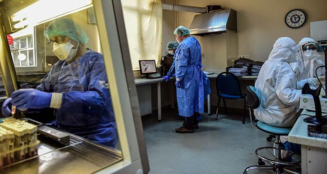 Son 24 saatte korona virüsten 340 kişi hayatını kaybetti