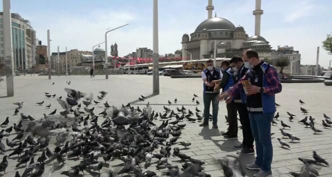 Taksim meydanı 1 Mayısta kuşlara kaldı
