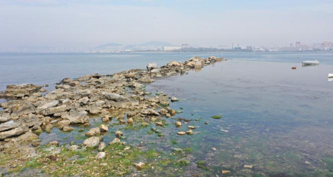 Tuzla'da 2 bin yıllık tarih, sular çekilince ortaya çıktı