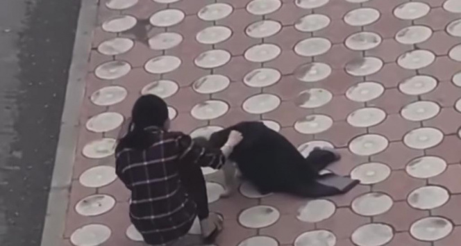 Üşüyen köpeğin üzerine montunu örttü