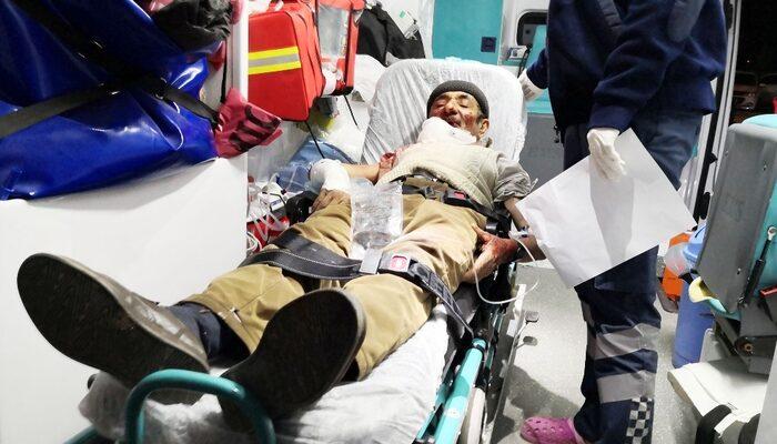 Aksaray'da korkunç olay! Köpek yaşlı adamın önce yüzünü, sonra vücudunu parçaladı