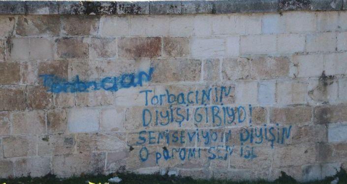 'Anadolu'nun ilk Roma köprüsü' olarak bilinen Misis'e sprey boyayla yazı yazdılar: 'Cahillik bu'