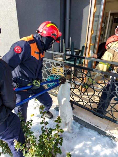 Balkon korkuluklarına sıkışan köpeği itfaiye kurtardı