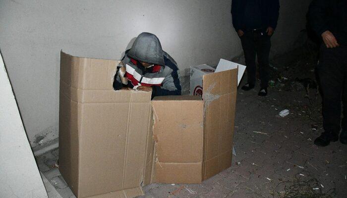 Filistinli kaçak göçmen karton koli içerisinde yatarken yakalandı