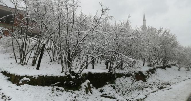 Karasu ilçesinde kar kalınlığı 5 santimetreye ulaştı