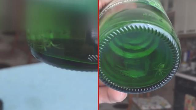 Marketten aldığı maden suyunun içinden örümcek çıktı