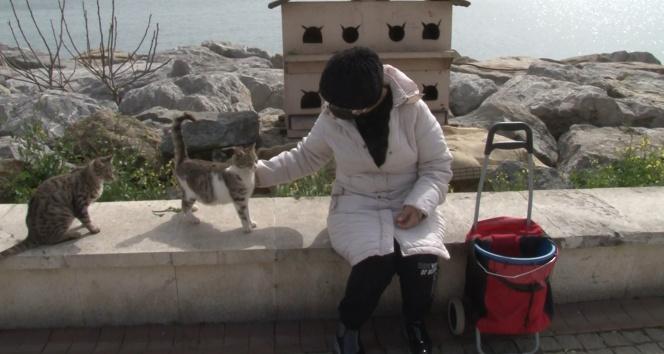 Pendik'te kısıtlama günü sokak hayvanlarını unutmadı, tek tek besledi