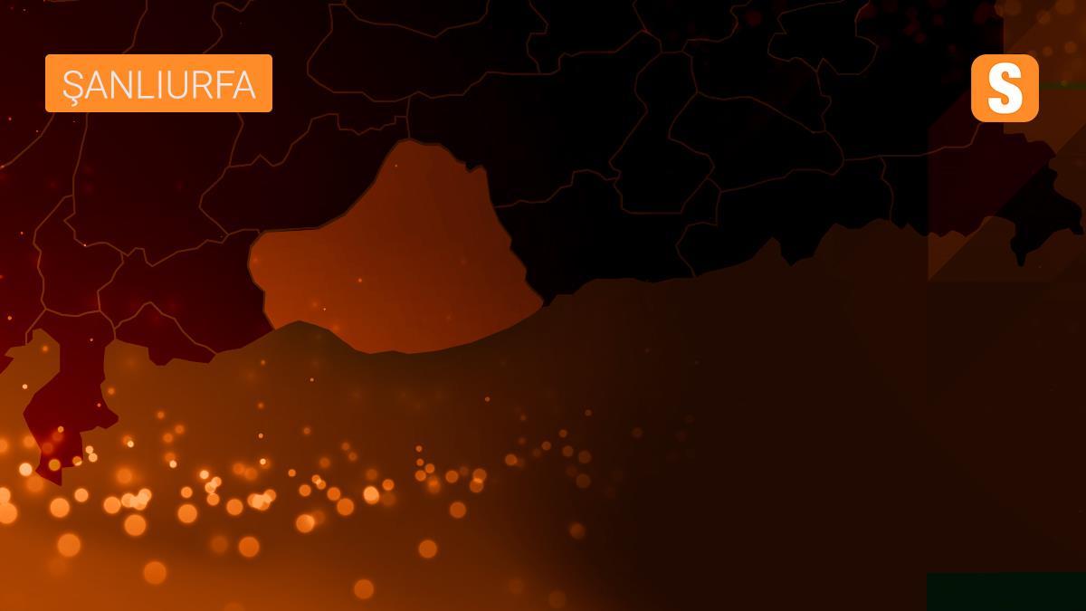 Şanlıurfa'da iki otomobil çarpıştı: 6 yaralı