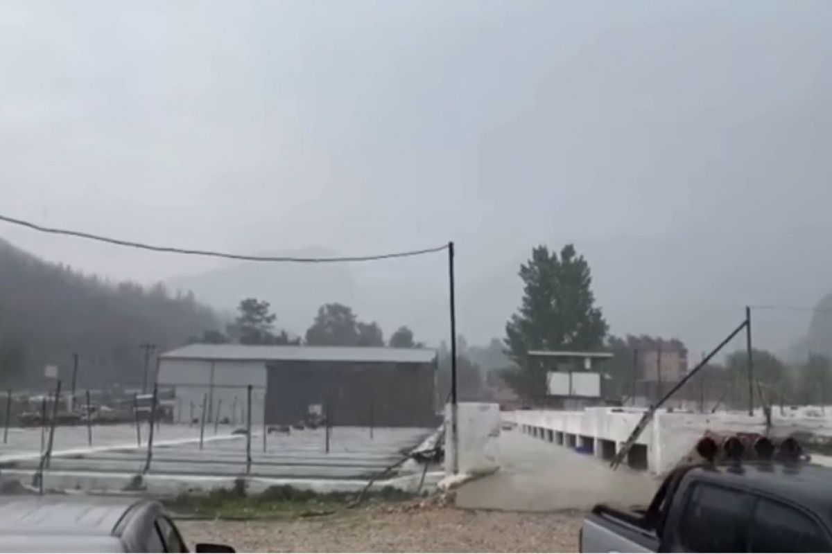 Sütçüler'deki yangın bölgesinde yağmur sevinci