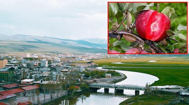 Yunan gazetesinde skandal haber: Ardahan'ı 'Doğu Pontus' şehri diye tanıttılar